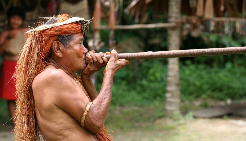"""""""La fraternità vissuta tra gli esclusi dell'Amazzonia"""", incontro online sulle comunità indigene"""