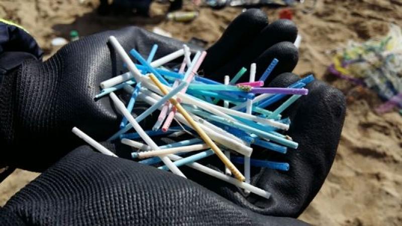 Legambiente presenta l'indagine Beach Litter: oltre 11mila i rifiuti trovati sulle spiagge marchigiane